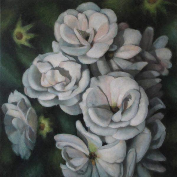 Klynge af hvide roser 80x80 kr. 16.000