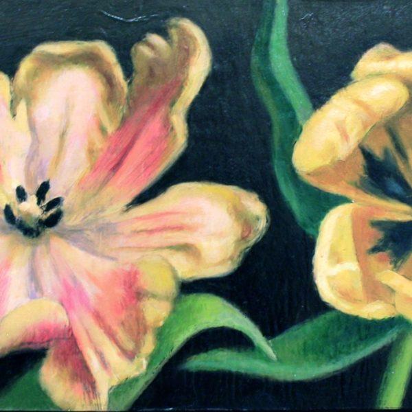 To tulipaner I 17x34 kr. 4000