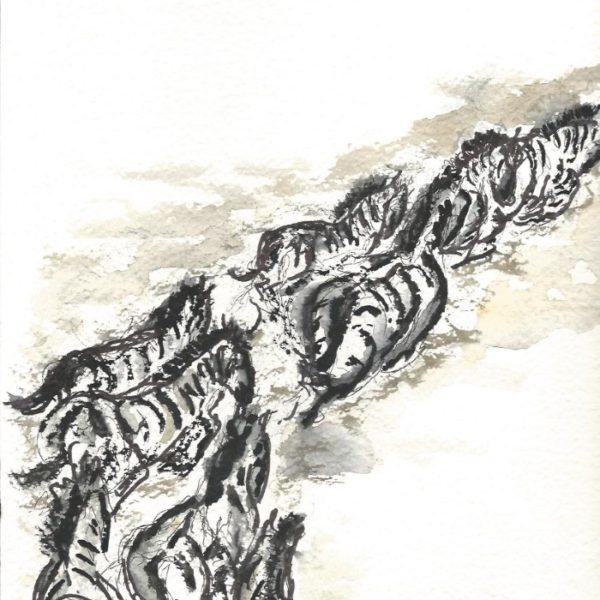 Zebraer migration Kenya